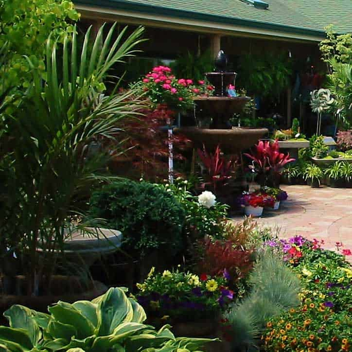 The east walkway at Passigia's Garden Center