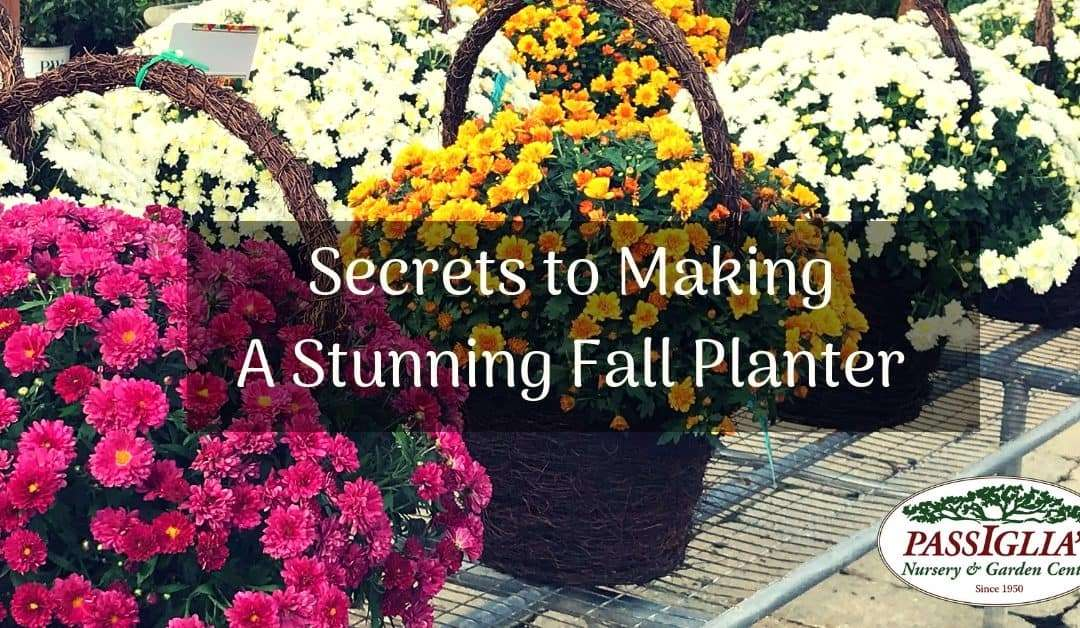 How to Make a Fall Planter